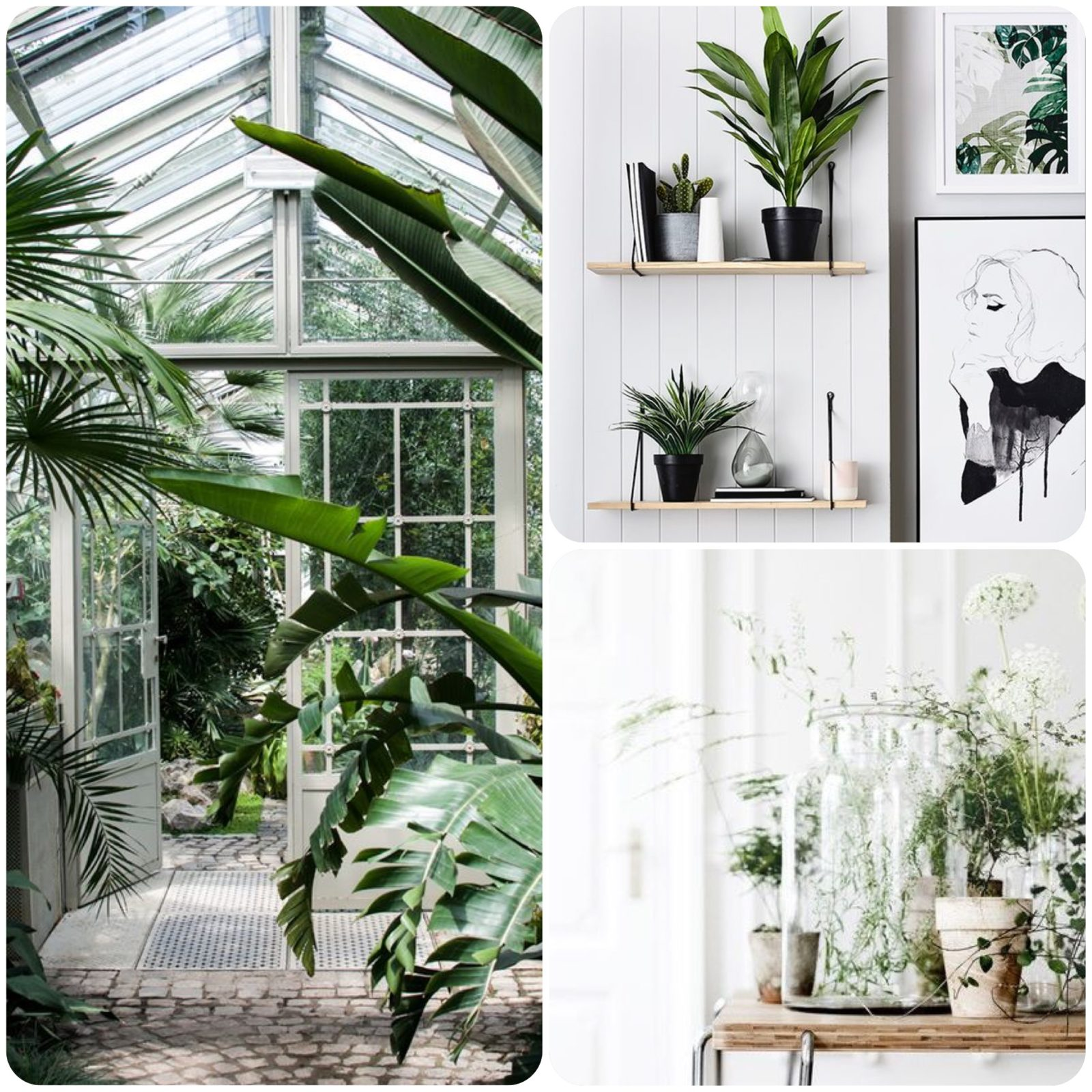 Home Decor Inspo – A Touch of Green